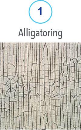 1 Alligatoring