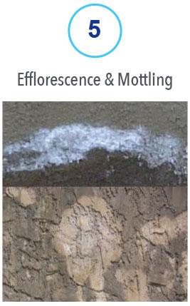 5 Efflorescence & Mottling